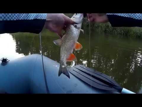 Рыбалка на реках южного урала видео
