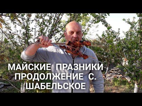 Vlog / шашлык из курицы в майонезе / с. Шабельское / Chicken Kebab