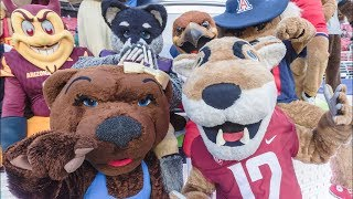 Is It Fair To Not Pay College Football Players When The Mascots Make $10,000,000 A Year?
