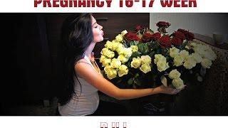 Дневник беременности || 16-17 неделя