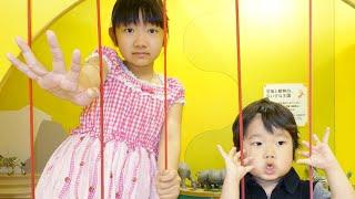 ★「恐竜王国から出られるの!?」ボーネルンドあそびのせかい★Bonerundo indoor playground★ thumbnail
