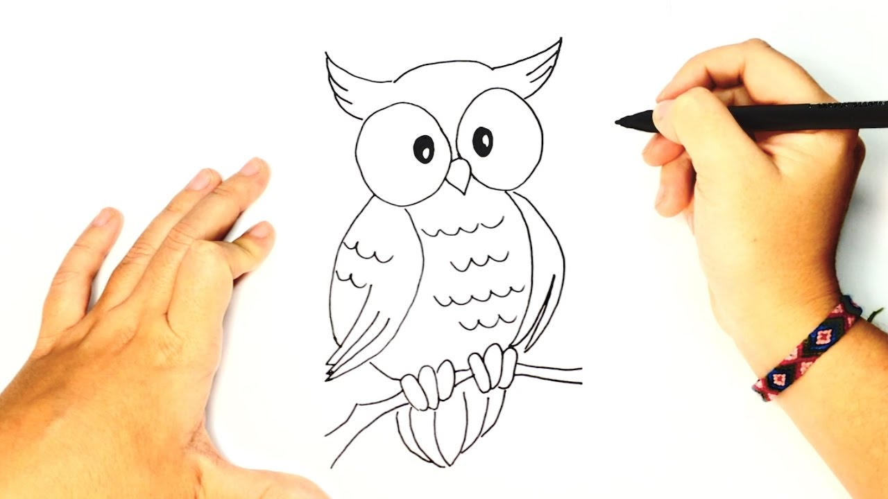 - How To Draw A Owl For Kids Cute Owl Drawing Lesson Step By Step