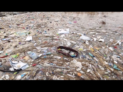 25 Arrested on Charges of Dumping Garbage into Yangtze River Mouth