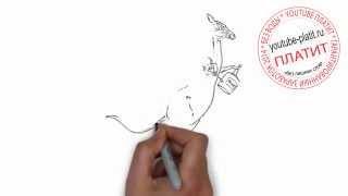 Как нарисовать карандашом бешеного кенгуру поэтапно