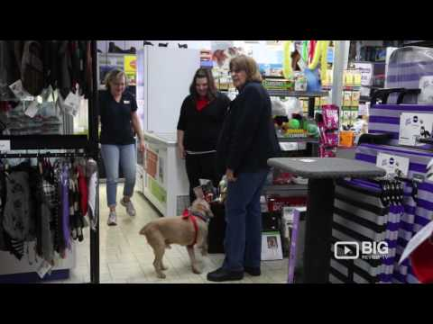 just-for-pets-in-perth-pet-store-and-pet-supplies