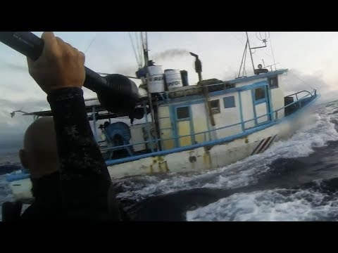 Catching Illegal Shark Finners in the Act