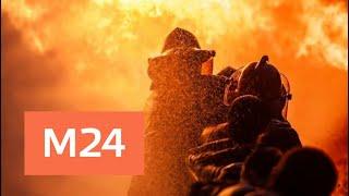 Смотреть видео При пожаре в жилом доме в районе Коньково пострадали четыре человека - Москва 24 онлайн