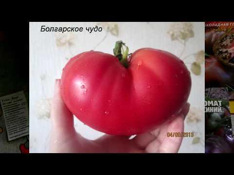 Новые семена томатов 2020. Клянусь, больше не буду!