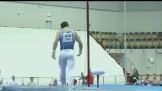 Артур Далалоян Перекладина Финал - Чемпионат России 2017
