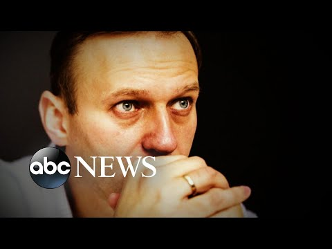 Dramatic video shows Russian opposition leader Alexei Navalny arrested by police
