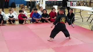 Navarro's Martial Arts Tournament