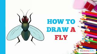 How to Draw a Fly in a Few Easy Steps: Drawing Tutorial for Kids and Beginners