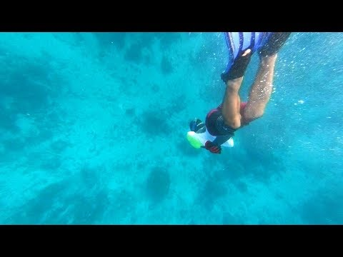 Spearfishing and Setting Sail To American Samoa (DJs Dives)