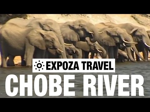 Chobe River (Zambia) Vacation Travel Video Guide