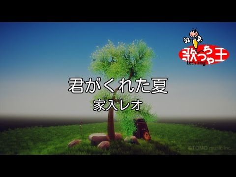 【カラオケ】君がくれた夏/家入 レオ