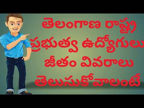 KNOW AND DOWNLOAD  EMPLOYEE SALARY DETAILS TELANGANA