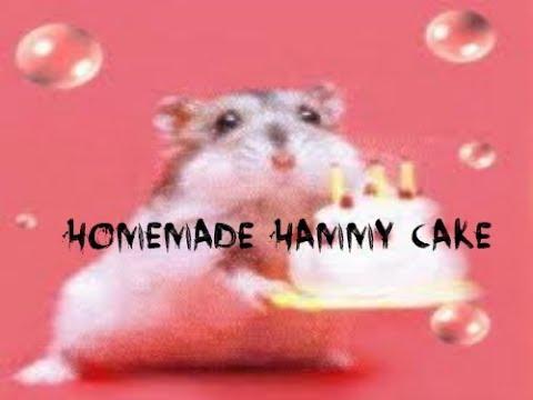 How To Make A Hamster Cake YouTube - Hamster birthday cake