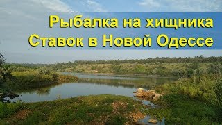 Рыбалка на хищника в жару | Мальки атакуют | Ставок Новая Одесса