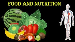 All About Human Nutrition and Food    Science    healthy food    Open Mind