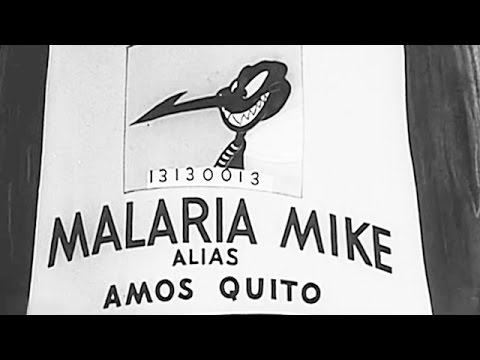 Private Snafu vs Malaria Mike | 1944 | US Army Animated Training Film