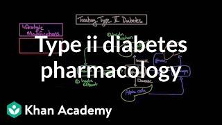 Treating Type Ii Diabetes