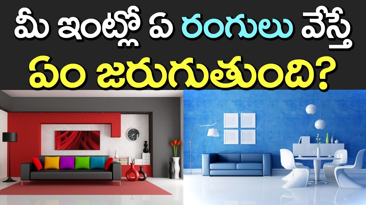 house colours colours of your walls at home which color to paint