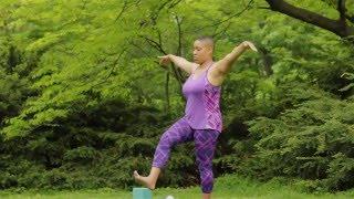 Full Length Gentle Yoga Class for Beginners and Seniors Vol. 2