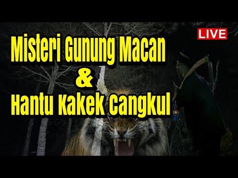 🔴live Misteri Gunung Macan Ponorogo Mencari Sosok Siluman Harimau,genderuwo Dan Kakek Cangkul