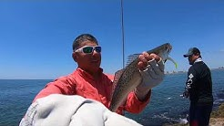 Surfside Jetty trout action!!! HOT !!! / Freeport Texas