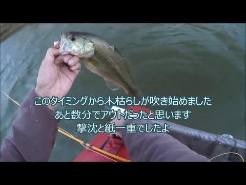 フライでバス釣り霞水系2017/11/11