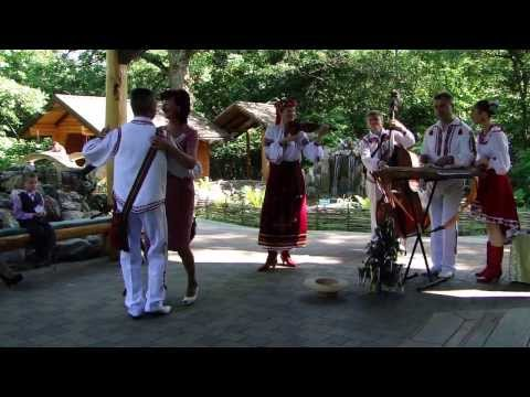 The Veseli Halychany Musicians are Playing at a Wedding in Ukraine