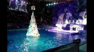 Новогодняя ёлка на воде «Русалочка»
