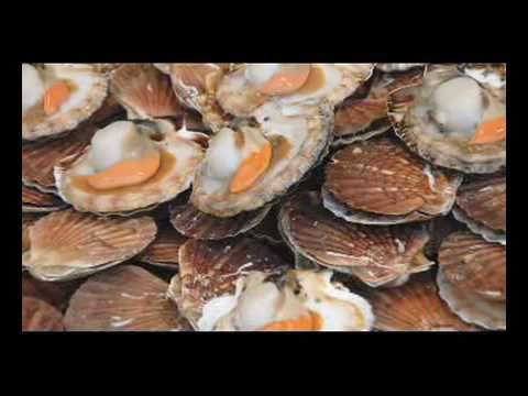 Take A Virtual Tour Of Santa Monica Seafood's Seafood Processing Plant