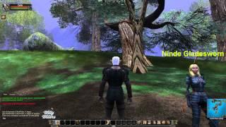 Vanguard Saga of Heroes 1080p