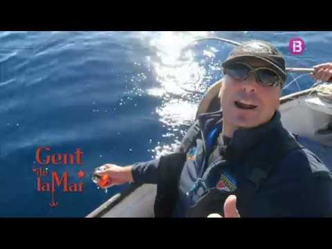 Gent de la mar [Cap. 79] - Pesca professional amb curricà, pesca de serrans i aranyes