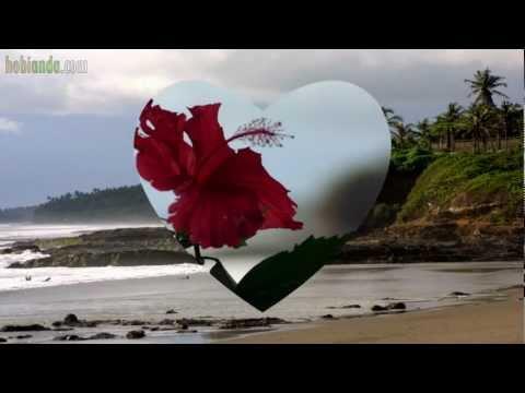 aku cinta kamu..titik - Ussy (lyrics)
