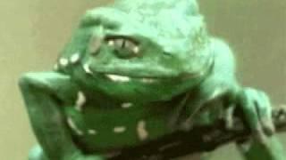 piknik...krastave žabe