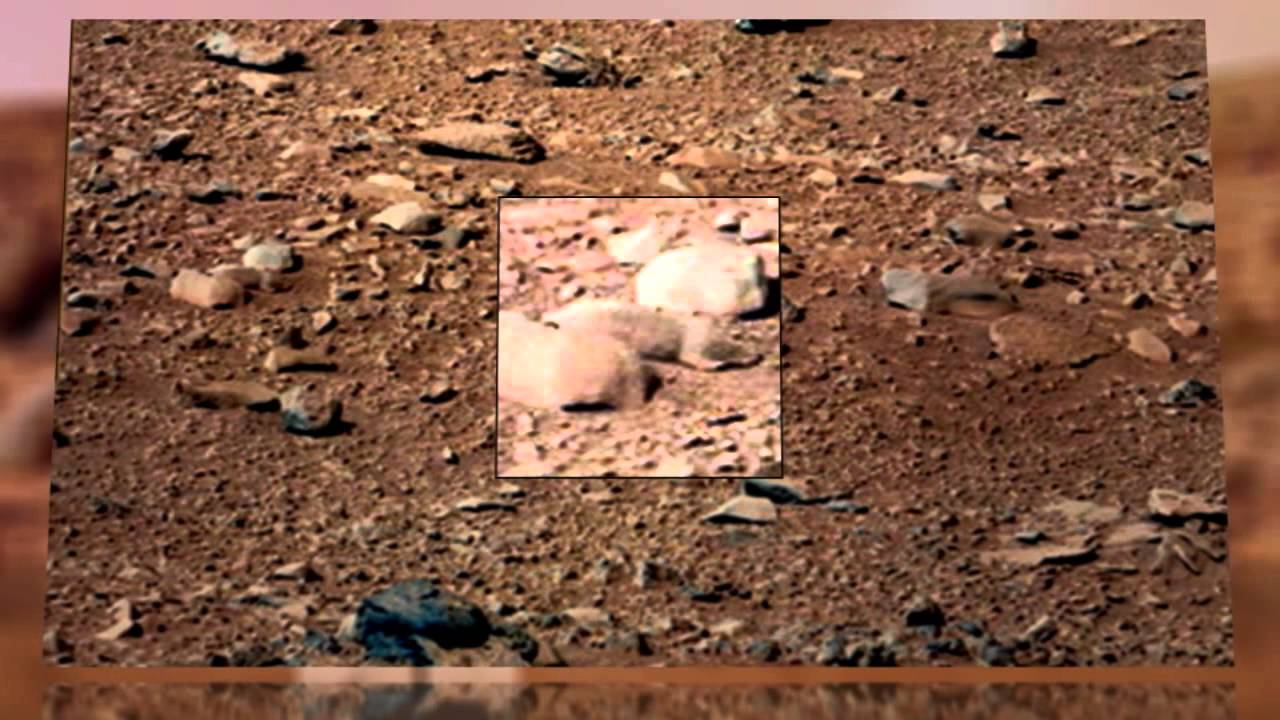 "True Believers Clamor for ""Mars Rat"" Spotted by Curiosity ..."