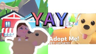 I'm checking out the new update in adopt me in (Roblox)💙