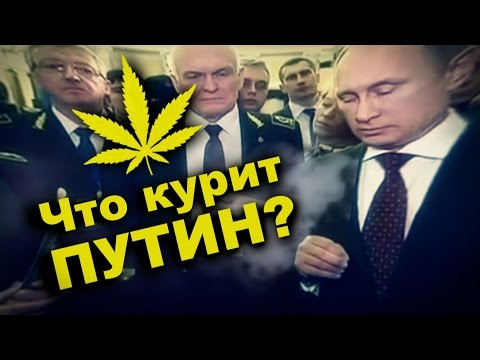 ЧТО КУРИТ ПУТИН? (Очередное бредовое заявление президента РФ)