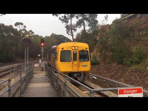 Adelaide Metro + Freight at Belair  - October 2017