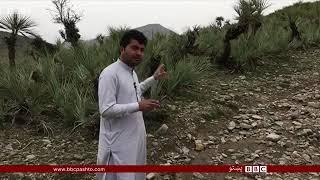 افغانستان او پاکستان جنگ پہ خوست کی pak Afghan fight