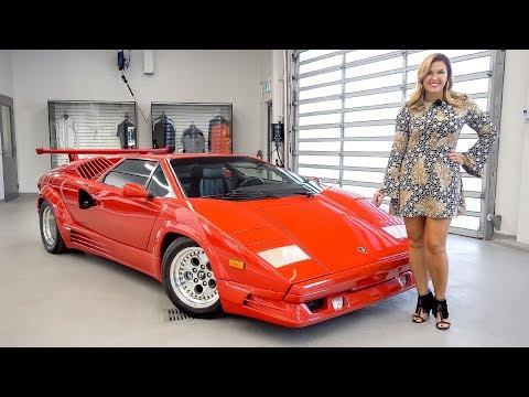 An Overview of the Legendary 1989 Lamborghini Countach 25th Anniversary + START&REV!!!