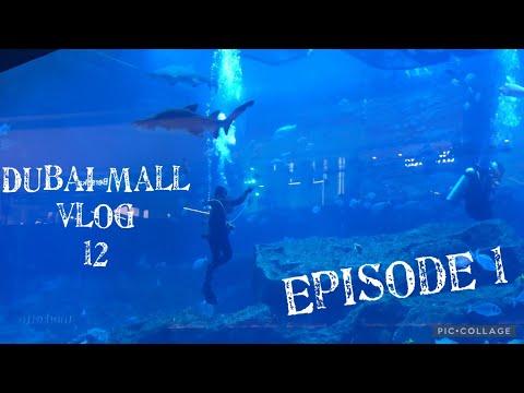 Dubai Mall Vlog 2021| Dubai Mall aquarium|Dubai Mall Part 1  #vlog 12 #pakistani vlogger in dubai