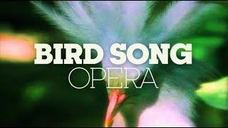 BIRD SONG OPERA