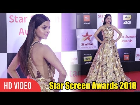 Vedhika Kumar at Star Screen Awards 2018