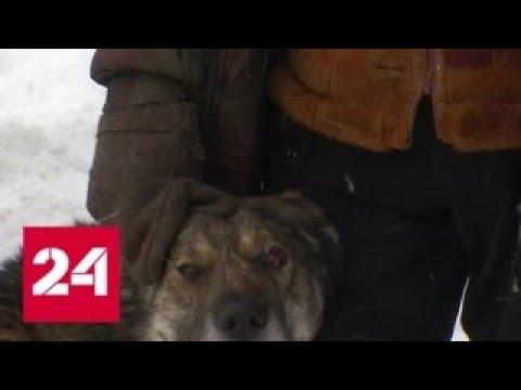 Пошехонье - зеркало русской глубинки - Россия 24