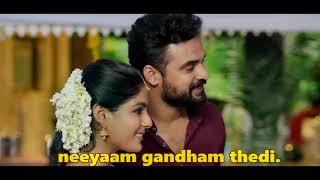 Jivamshamayi Song With Lyrics | Theevandi Movie | Kailas Menon | Shreya Ghoshal | Harisankar K S