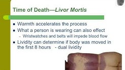 Rigor Mortis Stages Of Death - npcargentina org