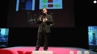Machines in minds to reverse engineer the machine that is mind: Randal A. Koene at TEDxTallinn